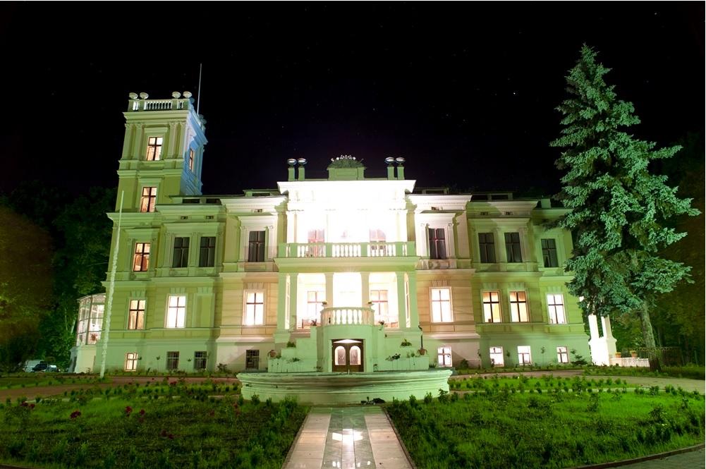 Biedrusko - Pałac